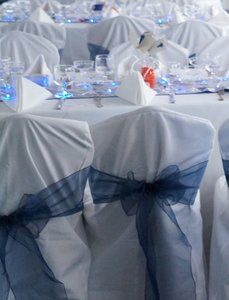 Vera Wang White Cover with Blue Sash 100 Set Of Chair Centerpiece