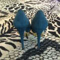 Charlotte Olympia Teal Pump Platforms Size US 8.5 Regular (M, B) Charlotte Olympia Teal Pump Platforms Size US 8.5 Regular (M, B) Image 2