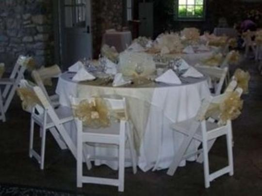 Champagne Organza Chair Sash Lot Reception Decoration