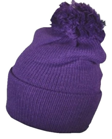 unknown Purple Beanie (Ivysclothing.com)