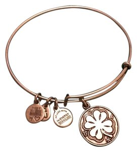 Alex and Ani Alex & Ani Bracelet