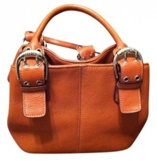 Preload https://img-static.tradesy.com/item/15650/tignanello-purse-burnt-orange-pumpkin-leather-satchel-0-0-540-540.jpg
