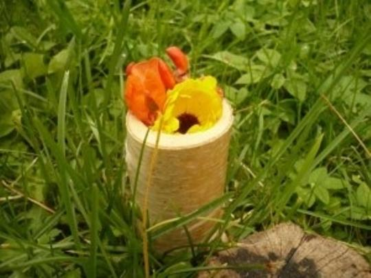 White New 75 Pices Natural Wood Birch Holders Votive/Candle