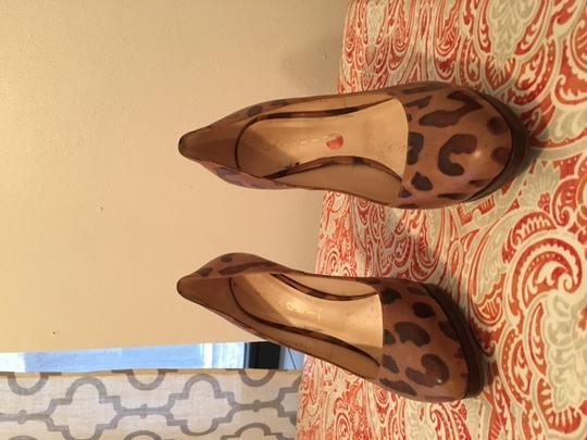 Casadei Brown leopard Pumps