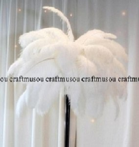 White Ostrich Feather 18-20 Inches 50 Pieces Reception Decoration