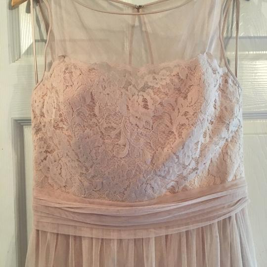 Amsale Champagne Lace/Tulle Feminine Bridesmaid/Mob Dress Size 12 (L) Image 3