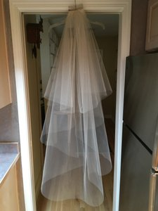 Bridal Veil In Champagne Tulle