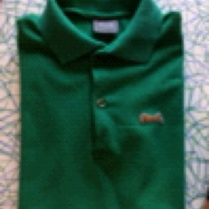 Le Tigre Button Down Shirt Green