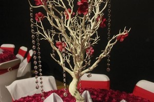 6 White Manzanita Trees With 8 Strands Crystal Garland Each