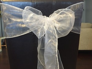 140 Light Silver Organza Sashes