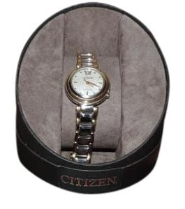 Eco Citizen Eco Citizen Sunrise Two Tone Ladies Watch