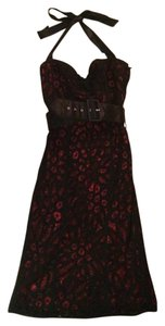 Betsey Johnson Lace Belted Knee Length Sexy Dress