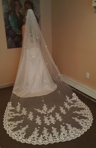 Gorgeous Lace Cathedral Veil 1 Tier Light Ivory / Wedding Veil