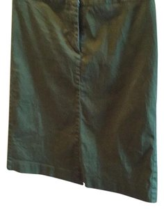 Ann Taylor Skirt Green