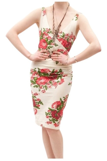 Preload https://item4.tradesy.com/images/betsey-johnson-cabbage-rose-print-short-casual-dress-size-12-l-161723-0-0.jpg?width=400&height=650