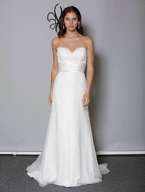 Anne Barge Pearl (Light Ivory) Organza and Alencon Lace Swansea Formal Wedding Dress Size 0 (XS) Anne Barge Pearl (Light Ivory) Organza and Alencon Lace Swansea Formal Wedding Dress Size 0 (XS) Image 1