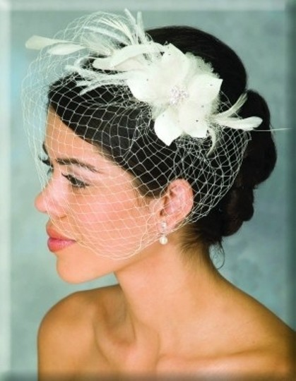 Preload https://item1.tradesy.com/images/diamond-white-birdcage-flower-comb-bridal-veil-163120-0-0.jpg?width=440&height=440