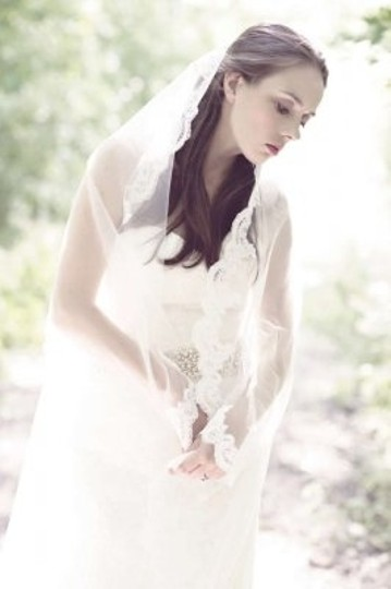 Preload https://item3.tradesy.com/images/light-ivory-long-cathedral-length-lace-bridal-veil-163847-0-0.jpg?width=440&height=440