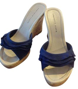 Charlotte Russe Navy blue Wedges