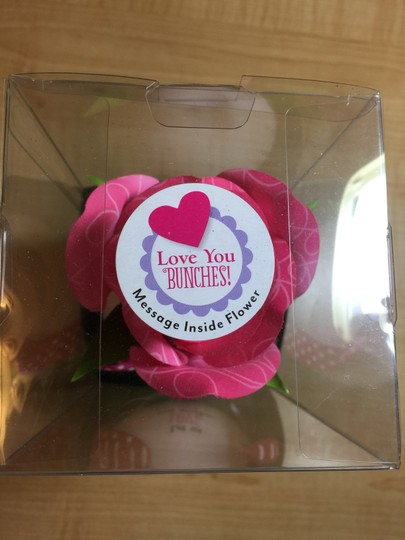 """Dayspring for Hallmark Blooming 'LOVE"""" Potted Rose by Dayspring for Hallmark - MissSundayBest"""