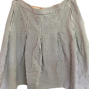 J.Crew Classic Striped A-line Pleated Skirt Blue and white