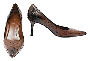 Gucci Ostrich Fashion Brown Ostrich Pumps