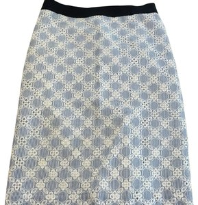 Ann Taylor Skirt Blue and white