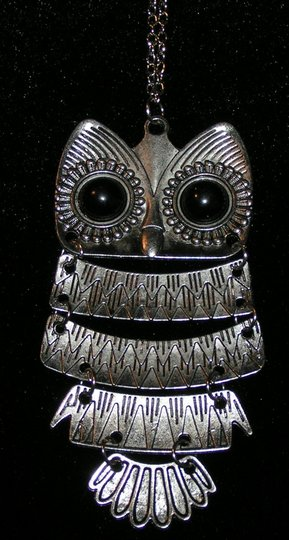 Unknown BOGO Free Silver owl sweater necklace free shipping