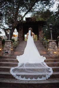 Romatic Cathedral Veil Light Ivory With Metal Wire Comb Sequin Lace