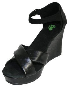 DAWGS Kaymann Black Crocodile Wedges