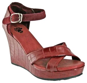 DAWGS Kaymann Burgundy Crocodile Wedges