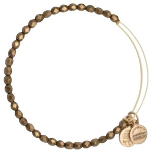 Alex and Ani Alex and Ani Cocoa Glisten