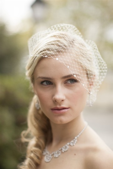 Mariell Ivory Birdcage with Crystal Lace Applique Bridal Veil