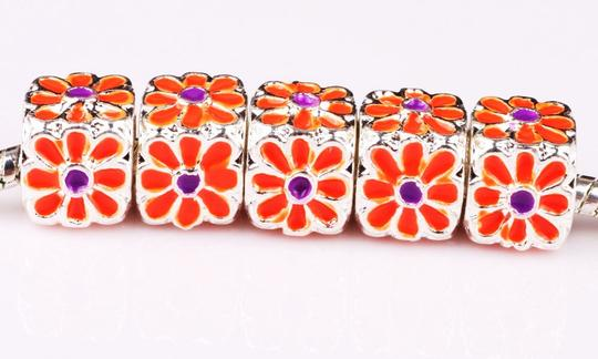 other 5 Piece European Charm Beads