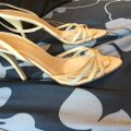 ALDO Golds and nudes Formal Image 2