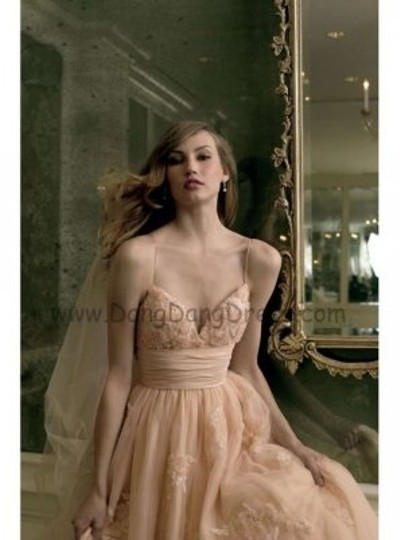Preload https://img-static.tradesy.com/item/173441/wtoo-champagne-tulle-feminine-wedding-dress-size-2-xs-0-0-540-540.jpg