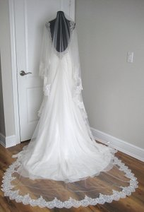 Bianca Cathedral Lace Veil