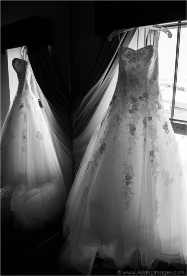Preload https://item1.tradesy.com/images/pronovias-off-white-tulle-barroco-traditional-wedding-dress-size-2-xs-1745545-0-0.jpg?width=440&height=440