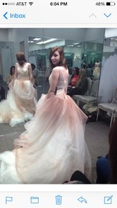 Vera Wang White Cream Pink Tulle Ombre Ball Gown with Up Skirt Vintage Wedding Dress Size 2 (XS)