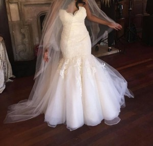 Jim Hjelm Vanilla/Ivory Lace and Tulle Bridal Gown Style Jh8214 Formal Wedding Dress Size 2 (XS)
