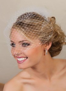 Ivory Petite Bridecage Veil With Pearls