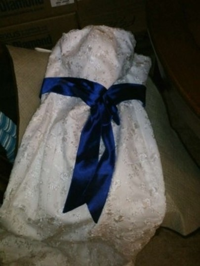 Ivory and Royal Blue Lace Mermaid Trumpet Feminine Wedding Dress Size 10 (M)