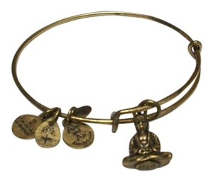 Alex and Ani Alex and Ani Budha Carm Bracelet