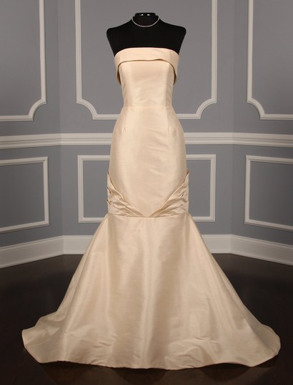 Anne Barge Champagne Dupioni Colette Formal Wedding Dress Size 10 (M) Image 1