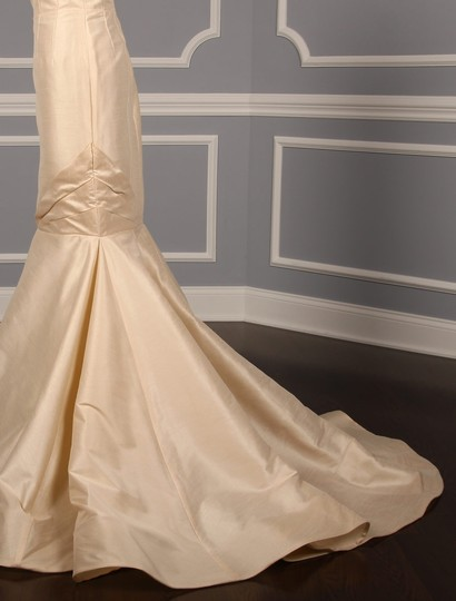 Anne Barge Champagne Dupioni Colette Formal Wedding Dress Size 10 (M) Image 7