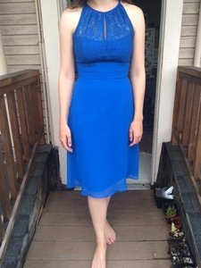 Jasmine Bridal Cobalt Blue Short Halter Lacy Dress