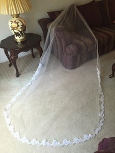 David's Bridal Beautiful Ivory Cathedral Veil