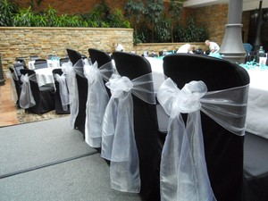 White Organza Sashes