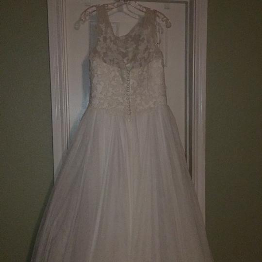 Pronovias Ivory Lace and Tulle Traditional Wedding Dress Size 10 (M) Image 7
