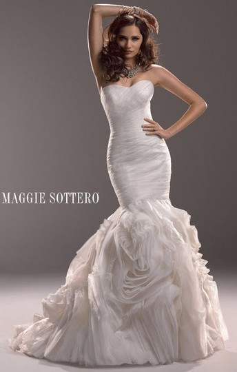 Preload https://img-static.tradesy.com/item/18183667/maggie-sottero-ivory-tulle-3mn770-traditional-wedding-dress-size-10-m-0-0-540-540.jpg